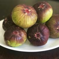 Benefits Of Fig (Anjeer)