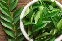 neem for body odour