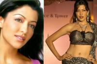 Aditi Govitrikar Love And Divorce Life