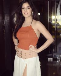 Vivian Dsena Has Allegedly Broken Up With Garima Jain