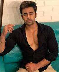 Pearl V Puri Gives Clarity On His Link-Up Rumours With