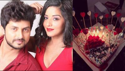 Nazar Star Monalisa's Cake-Smeared Face With Hubby, Vikrant On Her Birthday Proves She Had A Blast