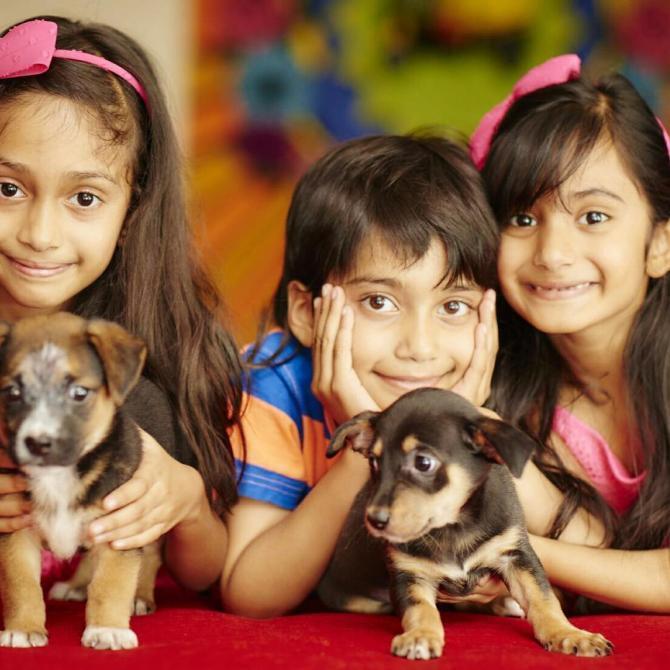 Farah Khan's children