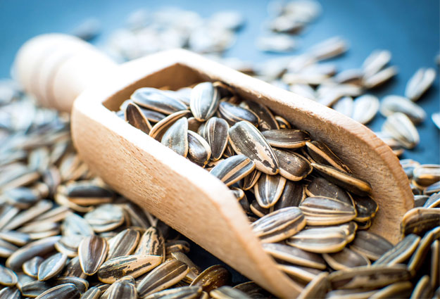 Seeds Which Aid In Weight Loss