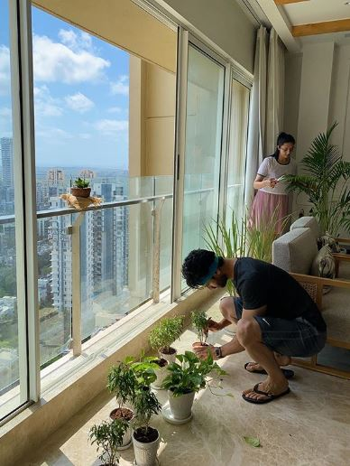 Divyanka Vivek Mini Garden