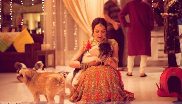 9 Cool And Creative Ways To Include Your Pets In Your Wedding