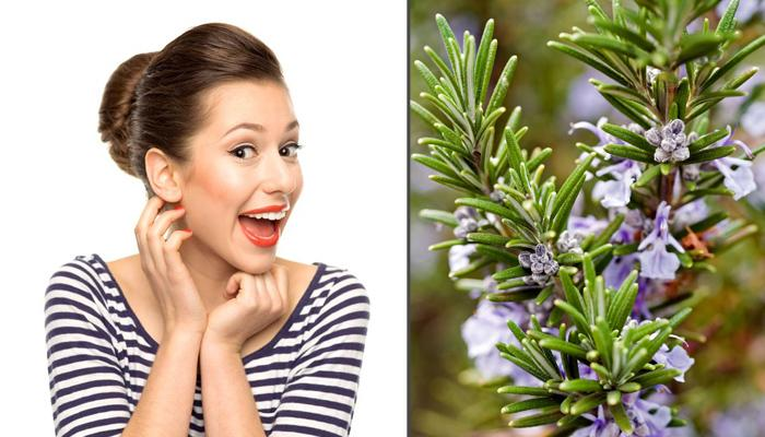 15 Hidden And Unique Benefits Of The Wonder Herb Rosemary