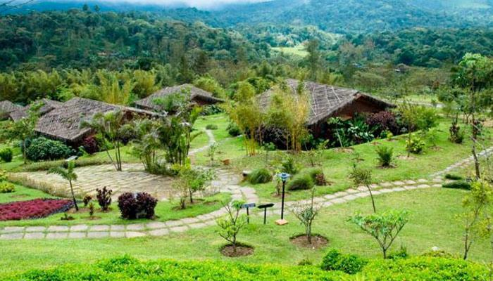 8 Reasons To Visit Coorg For A Short And Sweet Honeymoon