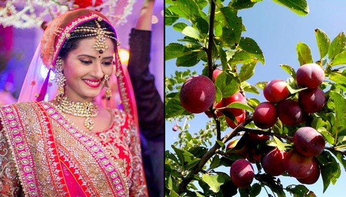 6 Magical Beauty Benefits Of Plum You Might Have Never Heard About