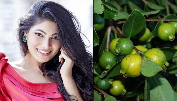 3 Easy Steps To Stop Hair Fall Using Guava Leaves In 30 Minutes