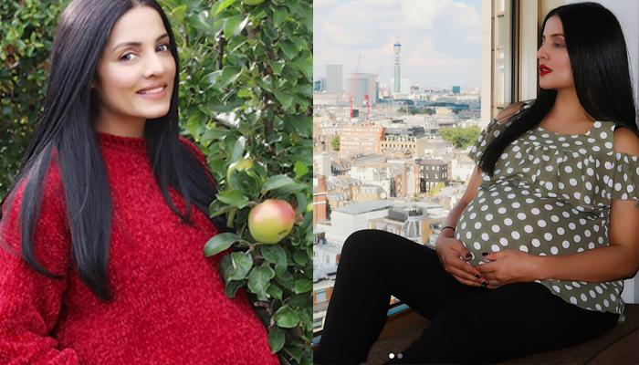 Pregnant With Twins Again After 6 Yrs Of Marriage, Celina Jaitley Is 'Babymooning'