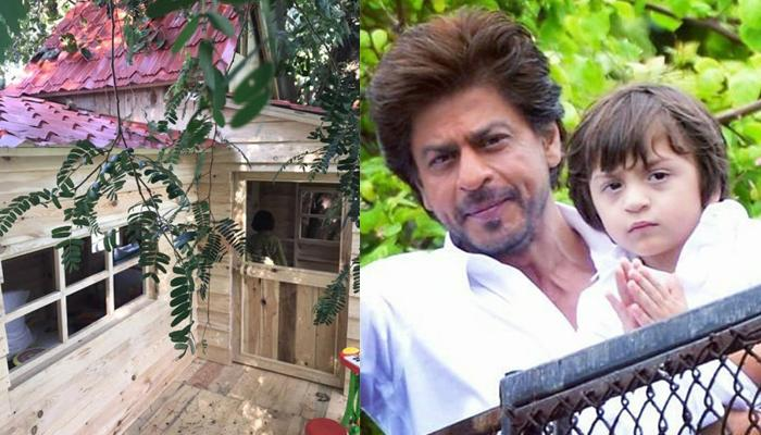 Shah Rukh Gifts A Private Tree House To Son AbRam; This Tree House Is Every Kid's Dream Come True