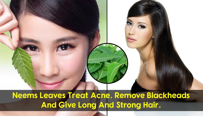 10 Amazing Medicinal Beauty Benefits Of Neem For Flawless