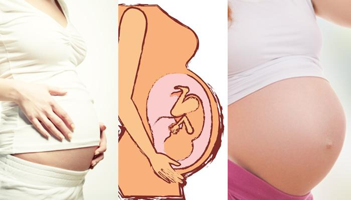 Stages Of Pregnancy Week By Week: Developments Of The Baby In A Pregnant Woman's Womb