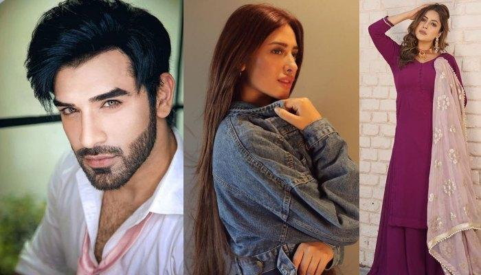Paras Chhabra, Mahira Sharma And Shehnaaz Gill: New Love Triangle In Bigg Boss 13?