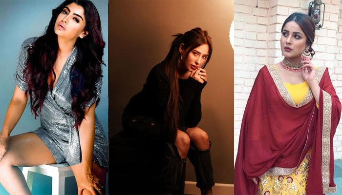 Akanksha Puri Thinks Shehnaaz Gill Is 'Despo' And Mahira Sharma Is A 'Smart Player' In 'Bigg Boss'