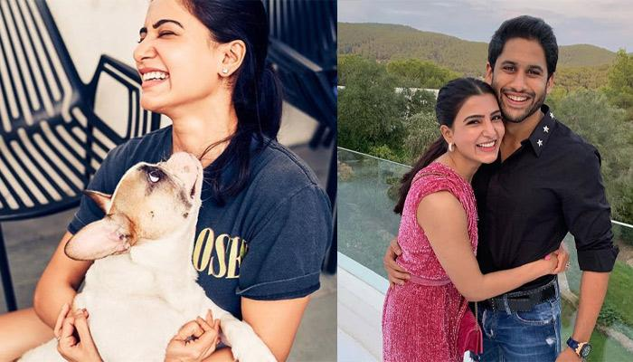 Samantha Akkineni Posts An Adorable Pic Of Hubby, Naga Chaitanya With Their Pet And It's Adorable