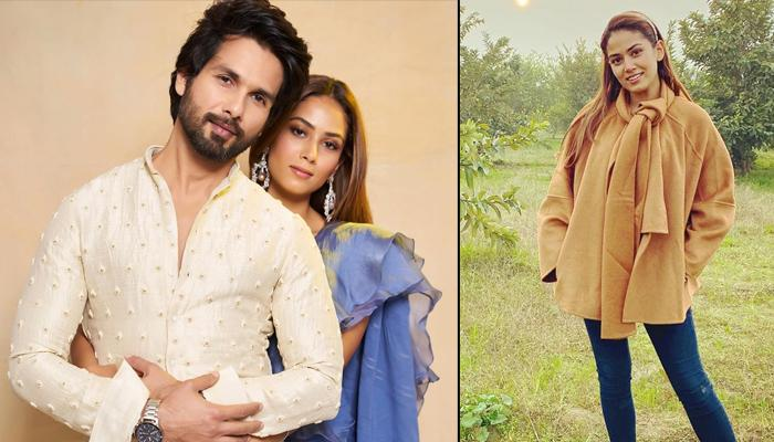 Shahid Kapoor's Comment On Mira Rajput Kapoor's 'I'm On Top Of The World' Photo Is All About Love