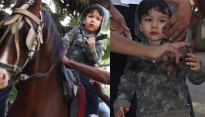 Taimur Ali Khan Enjoys A Royal Horse Ride On Mumbai Streets, Video Inside