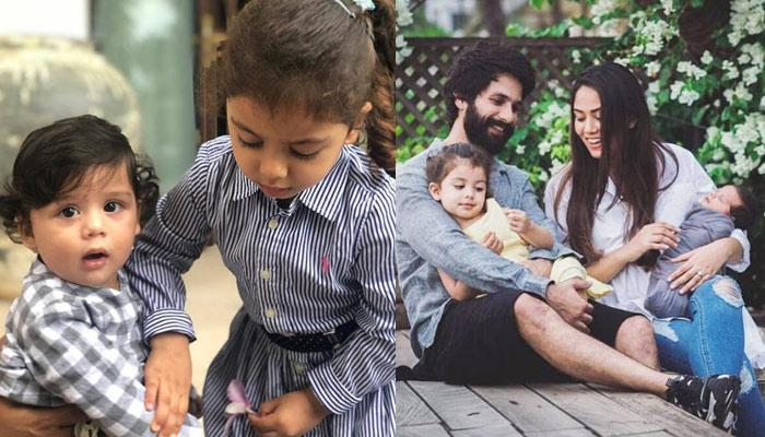 Shahid Kapoor Reveals How Mira Rajput Kapoor Reacts When Kids Misha And Zain Get Trolled