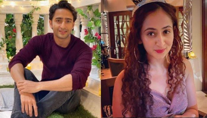 Shaheer Sheikh Shares A Shirtless Workout Video, Alleged GF, Ruchikaa Kapoor Reacts Like This