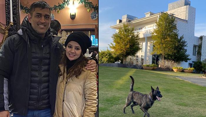Mahendra Singh Dhoni's Wife, Sakshi Dhoni Gives Inside Sneak Peek Of The 'Dhoni Farmhouse Ring Road'