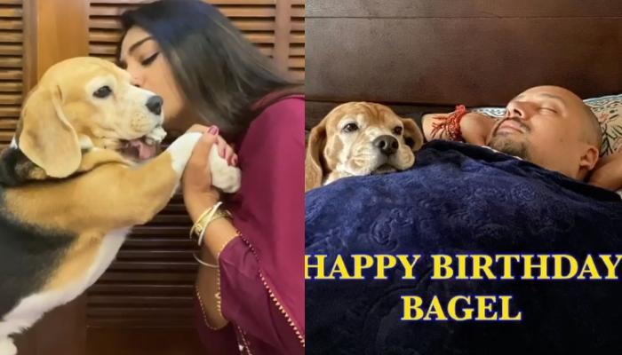 Mohena Kumari Singh Wishes Her Pooch With An Adorable Video Which Shows Hubby, Suyesh's Love For Him