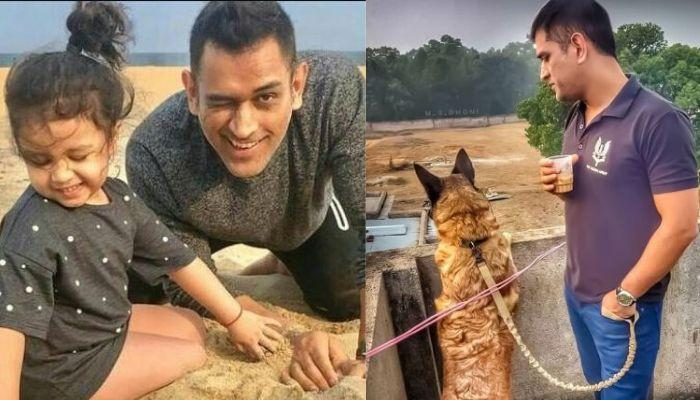 Ziva Dhoni's Laugh, Watching 'Papa', Dhoni Snuggle With Their Two Cute Pooches Will Make You Smile