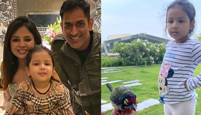 Mahendra Singh Dhoni's Little Girl, Ziva Singh Dhoni Saves A Birdie, Check Out To Know How