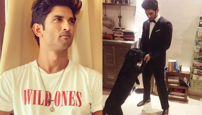 Sushant Singh Rajput's Dog, Fudge Has Relocated From Mumbai To Patna, Reunites With His Father