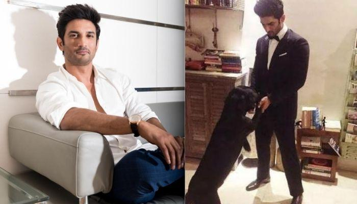 Sushant Singh Rajput Was Murdered With His Dog, Fudge's Belt, Says His Ex-Assistant, Ankit Acharya