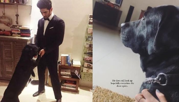 Sushant Singh Rajput's Niece Shares A Glimpse Of His Pet, Fudge, Hopefully Waiting For His Master