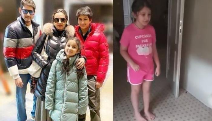 Mahesh Babu's Daughter, Sitara Shares Cute Video When A Fluffy Visitor Entered In Their Hotel's Room