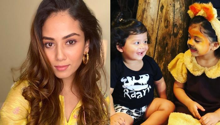 Mira Rajput Kapoor Cooks A Yummy Cuisine From The Beans Which Misha And Zain Plucked From A Tree