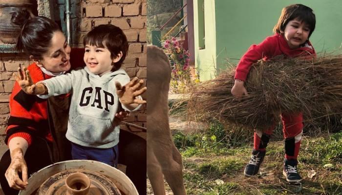गाय को चारा खिलाते नजर आए तैमूर अली खान, देखिए कैसे करीना कपूर के बेटे ने की गौ सेवा