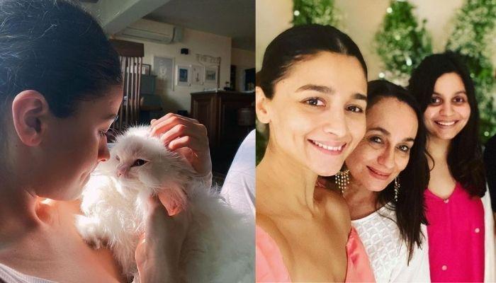 Alia Bhatt's Cat, Sheeba Passes Away, Her Mother, Soni Razdan Mourns, Actress Shares Pictures