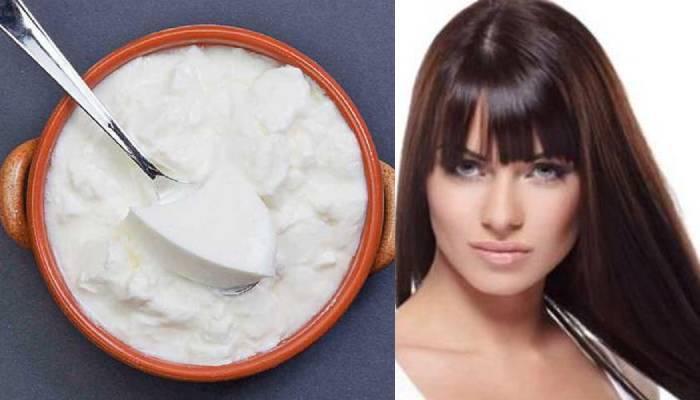 दही से बालों का इलाज: इन पांच तरीकों से घर पर बनाएं हेयर मास्क और पाएं हर समस्याओं से छुटकारा